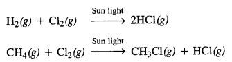 NCERT Solutions for Class 12 Chemistry Chapter 4 Chemical Kinetics 11