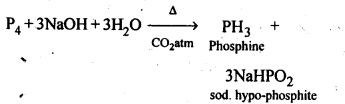 NCERT Solutions For Class 12 Chemistry Chapter 7 The p Block Elements-4