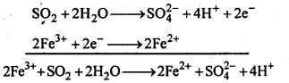 NCERT Solutions For Class 12 Chemistry Chapter 7 The p Block Elements-13