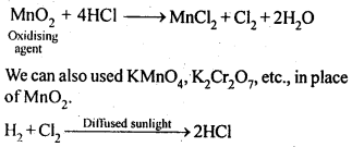 NCERT Solutions For Class 12 Chemistry Chapter 7 The p Block Elements-18