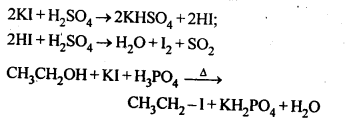 NCERT Solutions For Class 12 Chemistry Chapter 10 Haloalkanes and Haloarenes-2