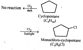 NCERT Solutions For Class 12 Chemistry Chapter 10 Haloalkanes and Haloarenes-15
