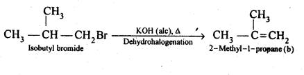 NCERT Solutions For Class 12 Chemistry Chapter 10 Haloalkanes and Haloarenes-24