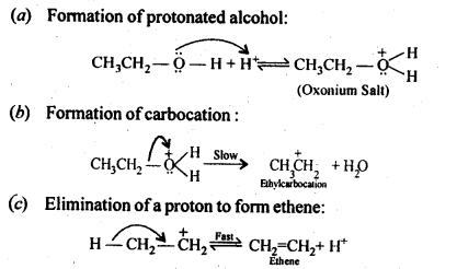 NCERT Solutions For Class 12 Chemistry Chapter 11 Alcohols Phenols and Ether-26