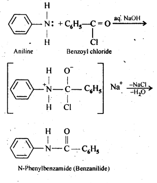 NCERT Solutions For Class 12 Chemistry Chapter 13 Amines-6