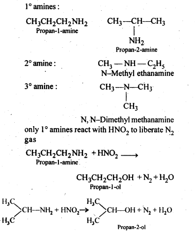 NCERT Solutions For Class 12 Chemistry Chapter 13 Amines-7