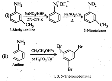 NCERT Solutions For Class 12 Chemistry Chapter 13 Amines-8