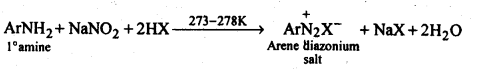NCERT Solutions For Class 12 Chemistry Chapter 13 Amines-25