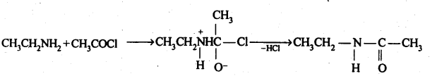 NCERT Solutions For Class 12 Chemistry Chapter 13 Amines-29