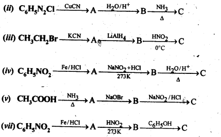 NCERT Solutions For Class 12 Chemistry Chapter 13 Amines-35
