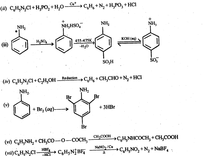 NCERT Solutions For Class 12 Chemistry Chapter 13 Amines-39