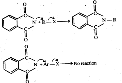 NCERT Solutions For Class 12 Chemistry Chapter 13 Amines-40