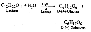 NCERT Solutions For Class 12 Chemistry Chapter 14 Biomolecules-1