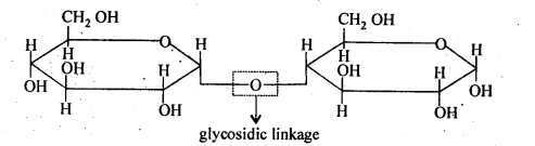 NCERT Solutions For Class 12 Chemistry Chapter 14 Biomolecules-4