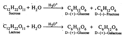 NCERT Solutions For Class 12 Chemistry Chapter 14 Biomolecules-5