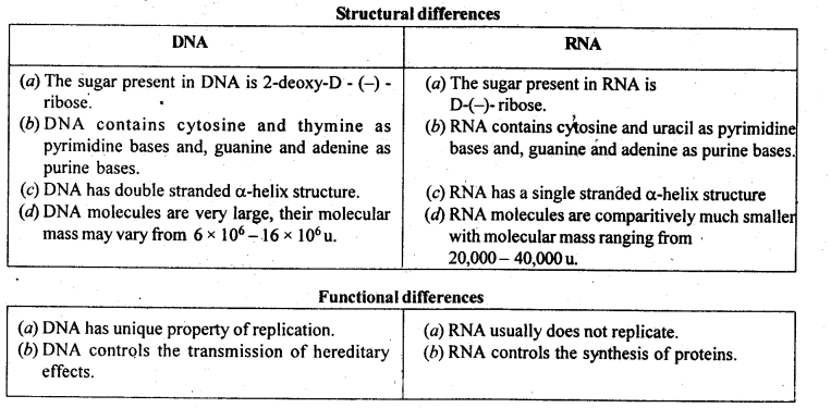 NCERT Solutions For Class 12 Chemistry Chapter 14 Biomolecules-14