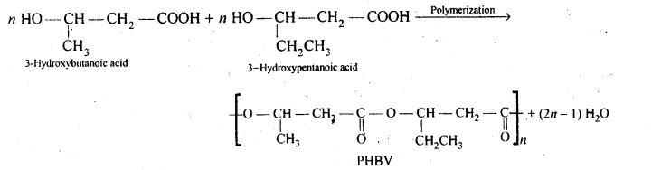 NCERT Solutions For Class 12 Chemistry Chapter 15 Polymers-13