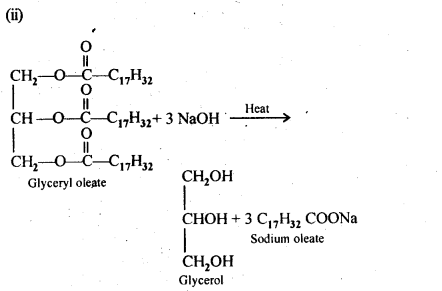 NCERT Solutions For Class 12 Chemistry Chapter 16 Chemistry in Everyday Life-2