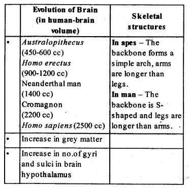NCERT Solutions For Class 12 Biology Chapter 7
