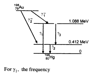 NCERT Solutions for Class 12 physics Chapter 13.56