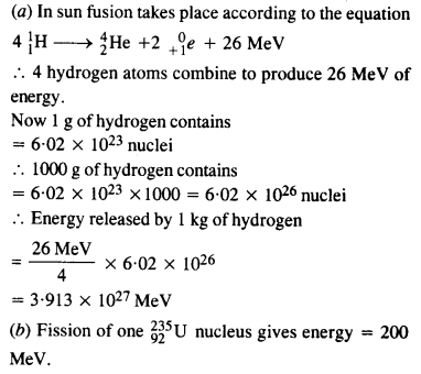 NCERT Solutions for Class 12 physics Chapter 13.59