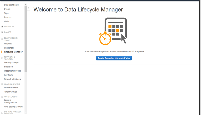 clickCreate Snapshot Lifecycle Policyto proceed - mytechmint